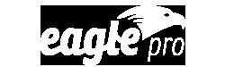 logotyp společnost Eagle